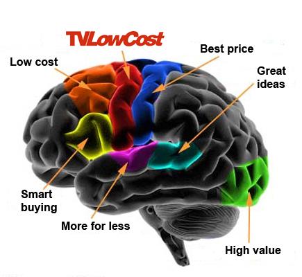 TVLowCost... les cerveaux qu'il vous faut !