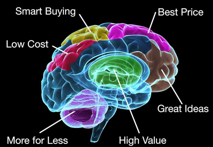 Le cerveau du Directeur Marketing moderne
